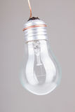 Clear light bulb with filament showing Stock Photography