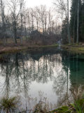 Clear morning by small lake with reflections Stock Photos