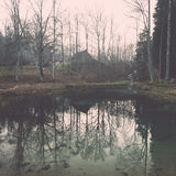 Clear morning by small lake with reflections. Vintage. Stock Image
