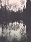 Clear morning by small lake with reflections. Vintage. Royalty Free Stock Images