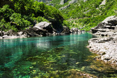 Clear mountain stream Stock Image