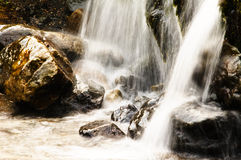 Clear Mountain Water Stream Stock Photography
