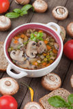 Clear mushroom soup. Clear portabello mushroom and vegetable soup served in a bowl Stock Images