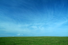Clear nature. Background of almost clear blue sky and green grass Stock Photos
