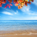 Clear Ocean Royalty Free Stock Images