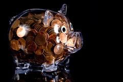 Clear Piggy Bank full of American Pennies. Clear plastic piggy bank full of american pennies Stock Image