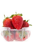 A clear plastic punnet of strawberries. A clear punnet of strawberries Royalty Free Stock Photos