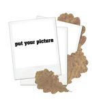 Clear polaroid frames. With leaves Stock Images