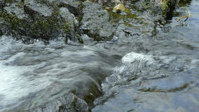 Clear potable running water stream stock footage