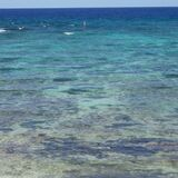 clear reef waters Royalty Free Stock Images