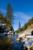 Clear river in the woods. In Winter Royalty Free Stock Image