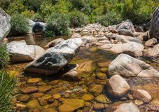 Clear rocky mountain stream. Crystal clear rocky mountain stream on a sunny day Stock Images