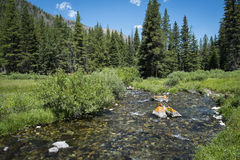 Clear Rocky Mountain Stream Royalty Free Stock Images
