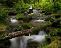 Clear running stream in the smoky mountians Royalty Free Stock Photo