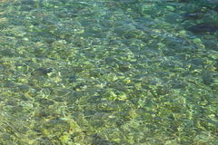 Clear sea background. Close-up showing the surface of the clear Adriatic sea in shallow water over some rocks Stock Photos