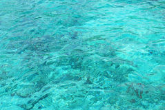 Clear sea with corel Royalty Free Stock Images
