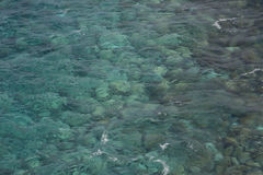 Clear sea detail. In La Palma (Canary Islands Royalty Free Stock Photos