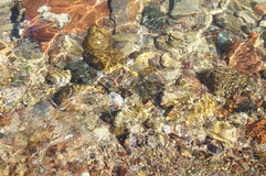Clear sea water and stones Royalty Free Stock Photo