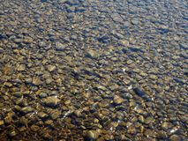 Free Clear Shallow River Water Flowing Over Pebbles Stock Photos - 147942873