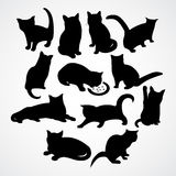 Clear silhouettes for cats and kittens Stock Images