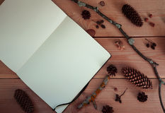 Clear sketchbook on wooden background. With some forest stuff Royalty Free Stock Photos