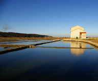 Clear skies above the Secovlje salt-pans Royalty Free Stock Photo