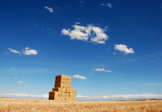 Hay stack in the summer field. Picture was taken in the golden fields of Spain royalty free stock photo