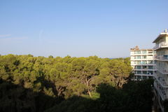 Clear sky over the trees with some hotel building on the right Stock Photo