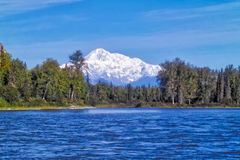Clear sky shot of Denali mountain from river. Denali mountain from nenana river Royalty Free Stock Image