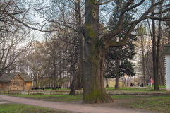 Clear spring evening in the park of the estate Museum Kolomenskoye, Moscow. Royalty Free Stock Photo