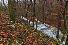 Clear stream and November foliage in the mountains Stock Photo