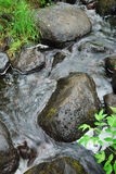 Clear stream running among wet rocks Stock Photo