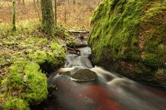 Clear stream runs a large stone. Wilderness landscape, long exposure Royalty Free Stock Photography