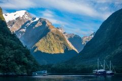 Clear sunny morning at Harrison Cove -Milford Sound. Sunny aspect early in the morning and a Cruise Boat at Harrison Cove in Milford Sound, Fiordland National Royalty Free Stock Images