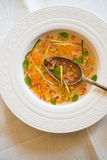 Clear tomato soup with chopped vegetables Royalty Free Stock Image