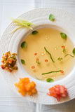 Clear tomato soup with chopped vegetables Royalty Free Stock Photos