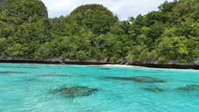 Clear tosca colored water near the white sand beach and green forest which growth on coral. In beautiful day Stock Photo