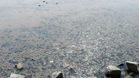 Clear & transparent Repulse Bay ripple,Sparkling lake,gravel. Gh2_01408 stock footage
