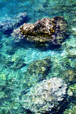 Clear turquoise water ashore the Adriatic sea Stock Photos