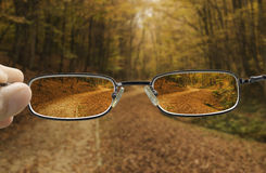 Clear vision of a autumn forest path. Seeing forest path in autumn through glasses that improve vision Stock Photography