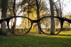 Clear vision forest. Clear vision through glasses Stock Photo