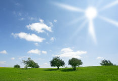 Clear and warm spring day in fields Royalty Free Stock Images