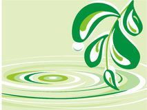 Clear water. Abstraction about clear water in green and white colors Royalty Free Stock Image