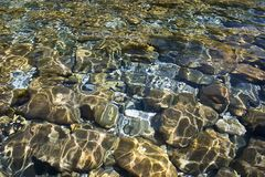 Clear water. Crystal clear water of Piva river and stones Stock Photo