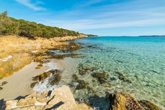 Clear water in Andreani cove in Caprera island. Sardinia Royalty Free Stock Photo