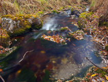 Clear water autum Royalty Free Stock Photos