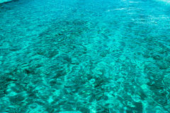 Clear water in Bahamas Royalty Free Stock Photos