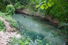 Clear water canal at Khlong Nam Sai, Surat Thani Stock Image