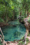 Clear water canal at Khlong Nam Sai, Surat Thani Stock Images