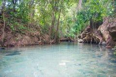 Clear water canal at Khlong Nam Sai, Surat Thani Royalty Free Stock Images